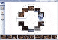 DVD Labeler 3.00.0011 screenshot
