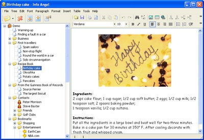 Info Angel 4.2 screenshot