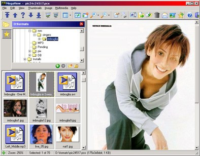 MegaView 12.0 screenshot