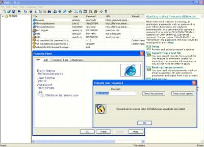 Password Director 3.2.2206 screenshot